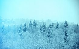 33c 1月横向俄国温度ural冬天 降雪 库存图片