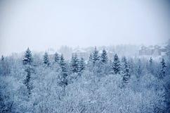 33c 1月横向俄国温度ural冬天 降雪 免版税库存照片