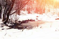 33c 1月横向俄国温度ural冬天 雪和土在公园 被解冻的补丁 图库摄影