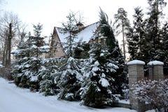 33c 1月横向俄国温度ural冬天 雪和树盖的议院 休养别墅 库存照片