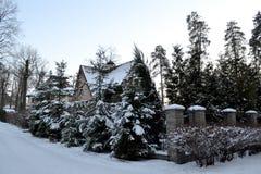 33c 1月横向俄国温度ural冬天 雪和树盖的议院 休养别墅 免版税库存照片