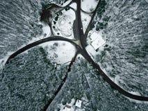 33c 1月横向俄国温度ural冬天 鸟瞰图多雪的森林和路 库存照片