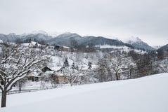 33c 1月横向俄国温度ural冬天 麸皮的山村,罗马尼亚语喀尔巴汗 免版税库存图片