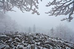 33c 1月横向俄国温度ural冬天 在冷的冬天期间,与白色雪的海风景石头与雪和深灰有雾的天空的和分支押韵 S 免版税库存照片