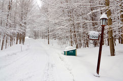 33c 1月横向俄国温度ural冬天 库存照片