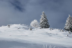 33c 1月横向俄国温度ural冬天 Beautifull在罗马尼亚语喀尔巴汗的冬天场面 免版税库存图片
