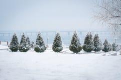 33c 1月横向俄国温度ural冬天 Dnipro 库存图片