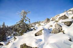 33c 1月横向俄国温度ural冬天 E 库存照片