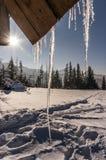 33c 1月横向俄国温度ural冬天 Tatry 库存照片