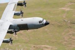 C-130赫拉克勒斯 库存照片