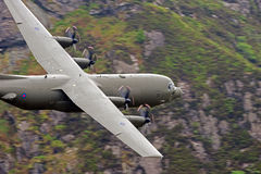 C-130 Ercole Immagine Stock