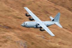 C-130 Hercules Royaltyfria Bilder