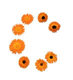 C. Flowers in the shape of the letter C royalty free stock images