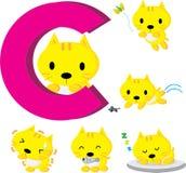 C猫 免版税库存图片