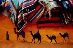 C&C kameel en tapijt Stock Foto's