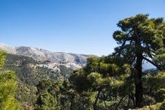 $c-andalusisch berglandschap met rollende heuvelsolijfgaarden en landbouwbedrijven onder een blauwe hemel in zuidelijk Spanje royalty-vrije stock foto