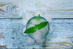 C?ctel de Mojito con hielo en el parque fotos de archivo libres de regalías