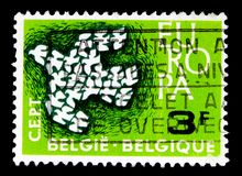 C.E.P.T. - Pigeons, serie, circa 1961. MOSCOW, RUSSIA - MAY 15, 2018: A stamp printed in Belgium shows C.E.P.T. - Pigeons, serie, circa 1961 stock photography