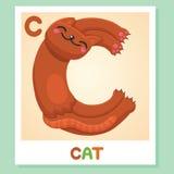 C est pour le chat Lettre C Chat, illustration mignonne blanc animal de vecteur de fonds d'image d'alphabet Photos stock