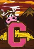 C est pour le cowboy Cow Images libres de droits
