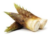 C'est pousse de bambou photographie stock libre de droits