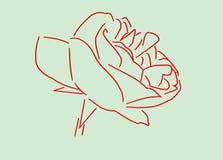 C'est un contour d'une rose rouge sur un fond vert images stock
