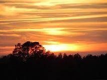 C'est un coucher du soleil d'or Photographie stock