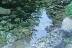 C'est un endroit parfait à méditer ou pour plonger vos orteils dans l'eau images stock