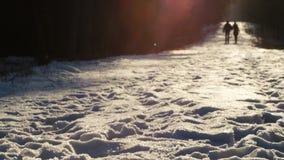 C'est un tir d'un jeune couple dans l'amour marchant en parc pittoresque d'hiver avec la neige tenant des mains au jour ensoleill banque de vidéos