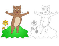 C für Katze Lizenzfreie Stockfotos