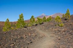 C=Footpath a Pico Viejo y a Pico del Teide Parque Nacional foto de archivo libre de regalías