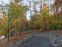 C g Hügel Memorial Park stockfotos