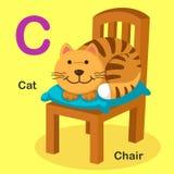 C-gatto animale della lettera di alfabeto isolato illustrazione, sedia Immagine Stock