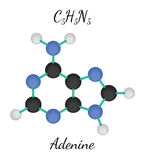 C5H5N5 adenine molecule Royalty Free Stock Photos