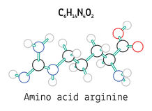 C6H14N4O2 Arginine amino zjadliwa molekuła ilustracji