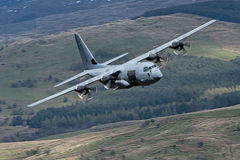 C130. The C-130 Hercules tactical transport aircraft is the workhorse of the RAFÕs Air Transport (AT) fleet and is based at RAF Lyneham, in Wiltshire, where it Stock Images