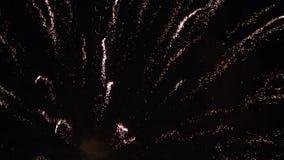 C?mara lenta del cielo nocturno colorido de los fuegos artificiales almacen de metraje de vídeo