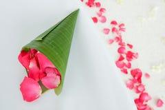 Cône de fleur. Image stock