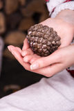 Cône de pin dans les mains d'une fille Bois de chauffage sur le fond Images stock