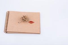Cône en forme de coeur de pin de feuille et un crayon sur un carnet Image stock