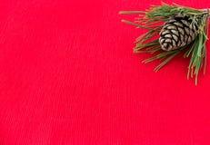 Cône naturel de pin à l'intérieur d'une brindille de pin Image libre de droits