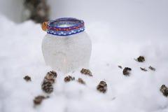 Cônes dans la neige Photographie stock libre de droits