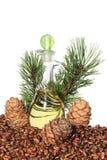 Cônes de cèdre, écrous et huile d'écrou de cèdre d'isolement sur le fond blanc Photographie stock libre de droits