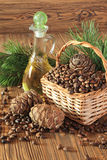 Cônes de cèdre, écrous et huile d'écrou de cèdre sur une table en bois Photo stock