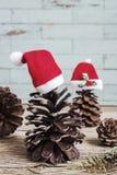 Cônes de pin avec des chapeaux de Noël Image stock