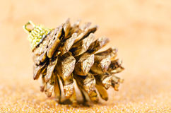 Cônes de pin d'or Photographie stock libre de droits