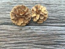 Cônes de pin d'or sur le fond en bois Photo libre de droits