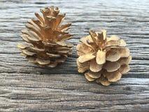 Cônes de pin d'or sur le fond en bois Photographie stock libre de droits