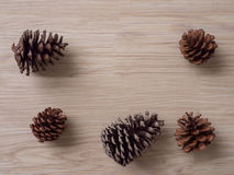 Cônes de pin sur le fond en bois Images libres de droits