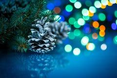 Cônes de sapin de Noël Photos stock